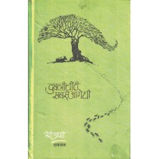 Dublee Cheenti Sabse Aage Thi (A Diary for children)